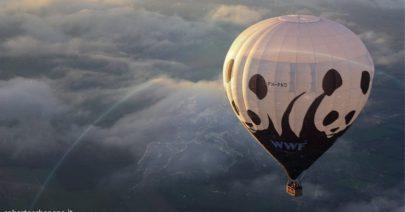 Governo-WWF-serve Ministero transizione ecologica e sostenibilità