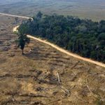 Brasile: Francia annuncia aiuti per 500 milioni di dollari per proteggere l'Amazzonia